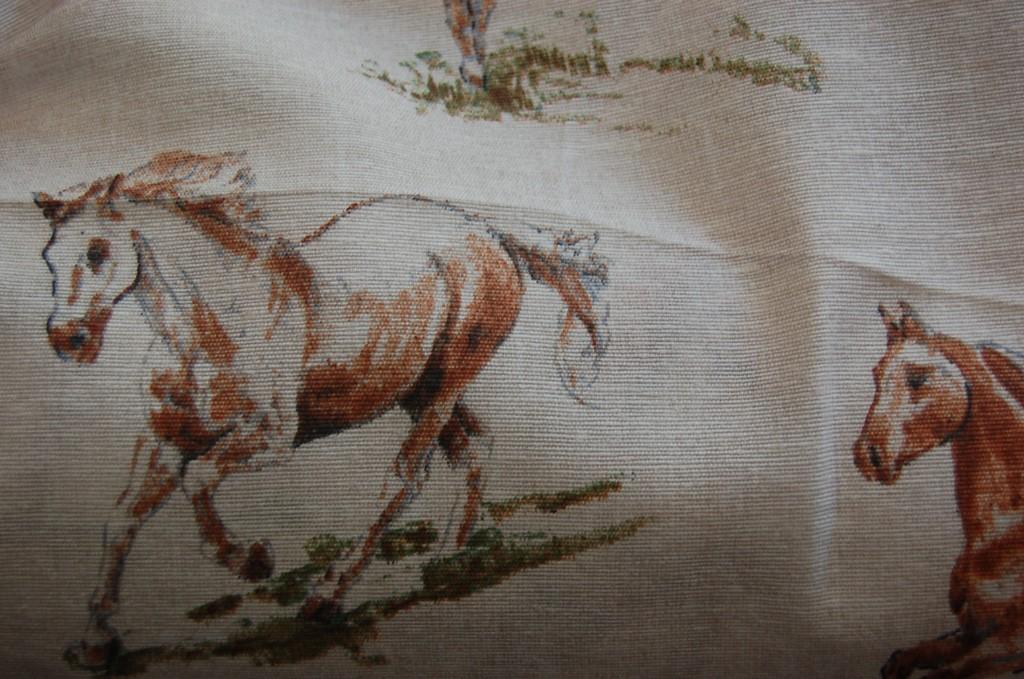 horses101l