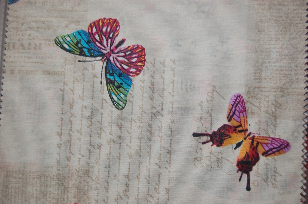 papilon101l-2